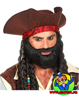 Barbe noire personnage