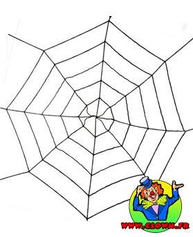 Toile d'araignée géante extensible