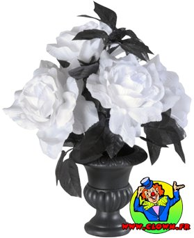 Vase avec roses blanches lumineuses