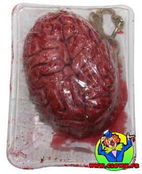Cerveau sanglant dans barquette